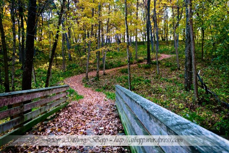 Agony Trail