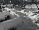 Riverside Path In Winter