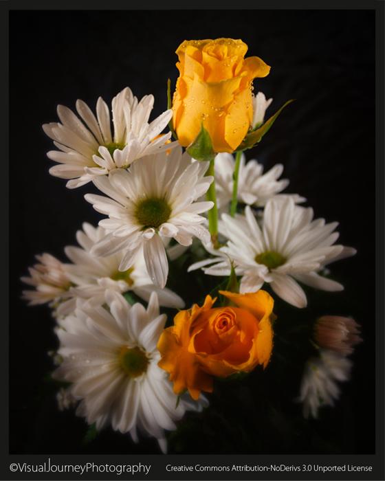 Studio Flowers 2
