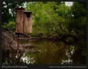 Wet Home On One Stilt