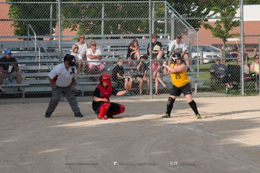 Softball Level 3 Vinton-Shellsburg vs Williamsburg 2014-5957
