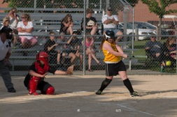 Softball Level 3 Vinton-Shellsburg vs Williamsburg 2014-5959
