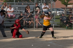 Softball Level 3 Vinton-Shellsburg vs Williamsburg 2014-5960