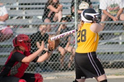 Softball Level 3 Vinton-Shellsburg vs Williamsburg 2014-5966