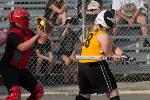 Softball Level 3 Vinton-Shellsburg vs Williamsburg 2014-5969