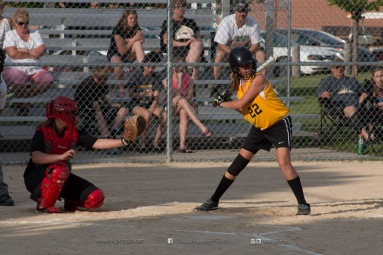 Softball Level 3 Vinton-Shellsburg vs Williamsburg 2014-5971