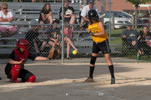 Softball Level 3 Vinton-Shellsburg vs Williamsburg 2014-5972