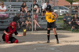Softball Level 3 Vinton-Shellsburg vs Williamsburg 2014-5973