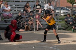 Softball Level 3 Vinton-Shellsburg vs Williamsburg 2014-5974