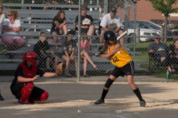 Softball Level 3 Vinton-Shellsburg vs Williamsburg 2014-5975