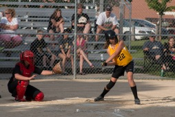 Softball Level 3 Vinton-Shellsburg vs Williamsburg 2014-5976