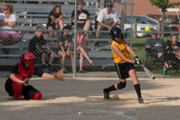 Softball Level 3 Vinton-Shellsburg vs Williamsburg 2014-5977