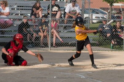 Softball Level 3 Vinton-Shellsburg vs Williamsburg 2014-5978