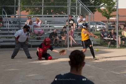 Softball Level 3 Vinton-Shellsburg vs Williamsburg 2014-5979