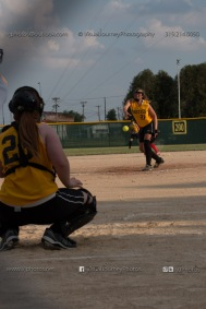 Softball Level 3 Vinton-Shellsburg vs Williamsburg 2014-6000