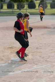 Softball Level 3 Vinton-Shellsburg vs Williamsburg 2014-6120