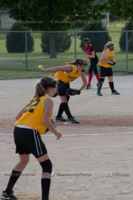 Softball Level 3 Vinton-Shellsburg vs Williamsburg 2014-6123