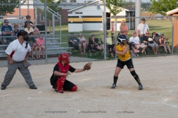 Softball Level 3 Vinton-Shellsburg vs Williamsburg 2014-6128