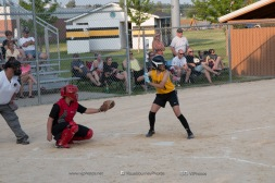 Softball Level 3 Vinton-Shellsburg vs Williamsburg 2014-6150