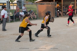 Softball Level 3 Vinton-Shellsburg vs Williamsburg 2014-6164