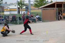 Softball Level 3 Vinton-Shellsburg vs Williamsburg 2014-6213