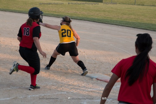 Softball Level 3 Vinton-Shellsburg vs Williamsburg 2014-6217