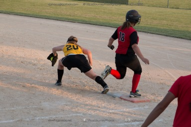 Softball Level 3 Vinton-Shellsburg vs Williamsburg 2014-6219