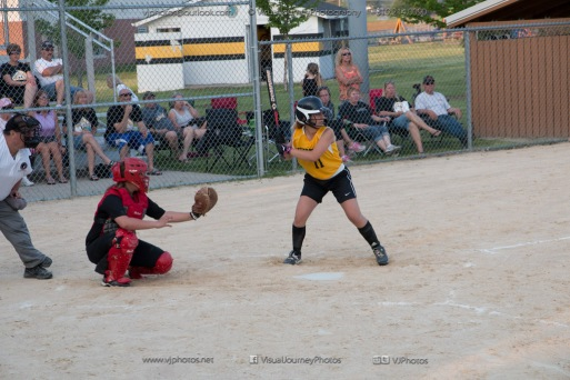 Softball Level 3 Vinton-Shellsburg vs Williamsburg 2014-6220