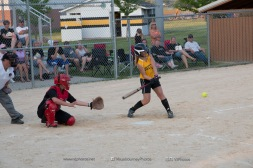 Softball Level 3 Vinton-Shellsburg vs Williamsburg 2014-6221