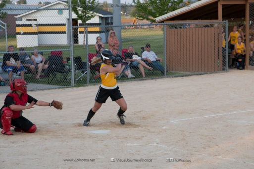 Softball Level 3 Vinton-Shellsburg vs Williamsburg 2014-6228