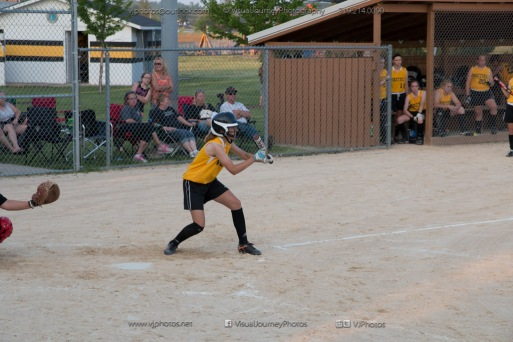 Softball Level 3 Vinton-Shellsburg vs Williamsburg 2014-6231