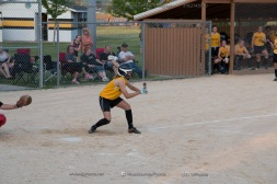 Softball Level 3 Vinton-Shellsburg vs Williamsburg 2014-6232