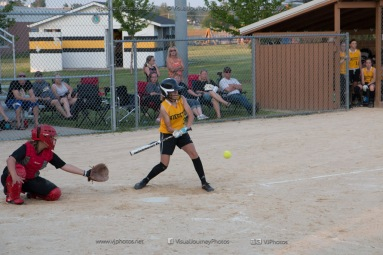 Softball Level 3 Vinton-Shellsburg vs Williamsburg 2014-6240