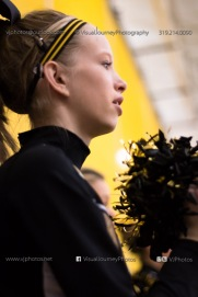 Vinton-Shellsburg vs Solon 2013-9668