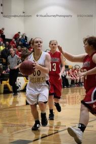 Sophomore Girls Basketball Vinton-Shellsburg vs Williamsburg-0065