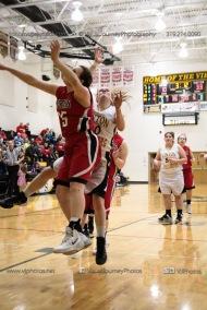 Sophomore Girls Basketball Vinton-Shellsburg vs Williamsburg-0069