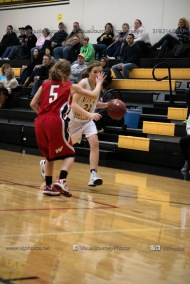 Sophomore Girls Basketball Vinton-Shellsburg vs Williamsburg-0103