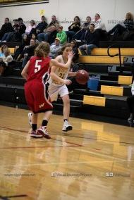 Sophomore Girls Basketball Vinton-Shellsburg vs Williamsburg-0103