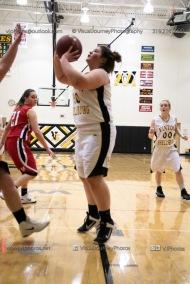 Sophomore Girls Basketball Vinton-Shellsburg vs Williamsburg-0104