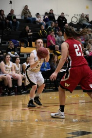 Sophomore Girls Basketball Vinton-Shellsburg vs Williamsburg-0105