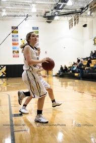 Sophomore Girls Basketball Vinton-Shellsburg vs Williamsburg-0110