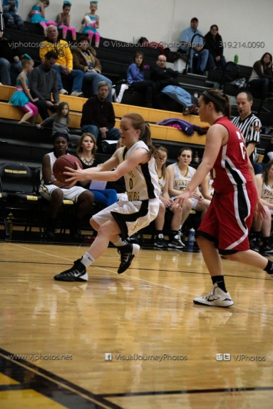 Sophomore Girls Basketball Vinton-Shellsburg vs Williamsburg-0121