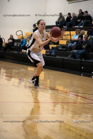 Sophomore Girls Basketball Vinton-Shellsburg vs Williamsburg-0167