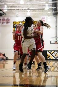 Sophomore Girls Basketball Vinton-Shellsburg vs Williamsburg-0186