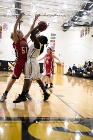 Sophomore Girls Basketball Vinton-Shellsburg vs Williamsburg-0191