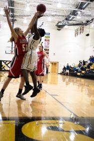Sophomore Girls Basketball Vinton-Shellsburg vs Williamsburg-0192
