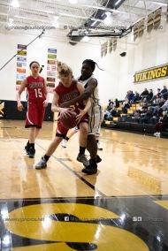 Sophomore Girls Basketball Vinton-Shellsburg vs Williamsburg-0196