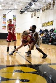 Sophomore Girls Basketball Vinton-Shellsburg vs Williamsburg-0198