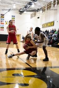 Sophomore Girls Basketball Vinton-Shellsburg vs Williamsburg-0199