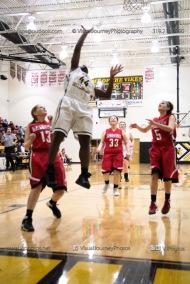 Sophomore Girls Basketball Vinton-Shellsburg vs Williamsburg-0210